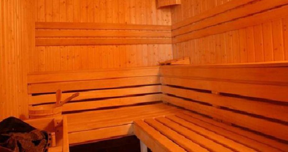 Apart Htl Forest Nook Pamporovo bugarska zimovanje sauna