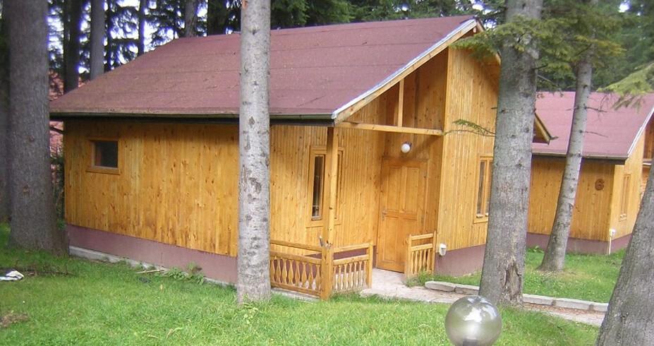 Hotel Iglika Palace borovec zimovanje